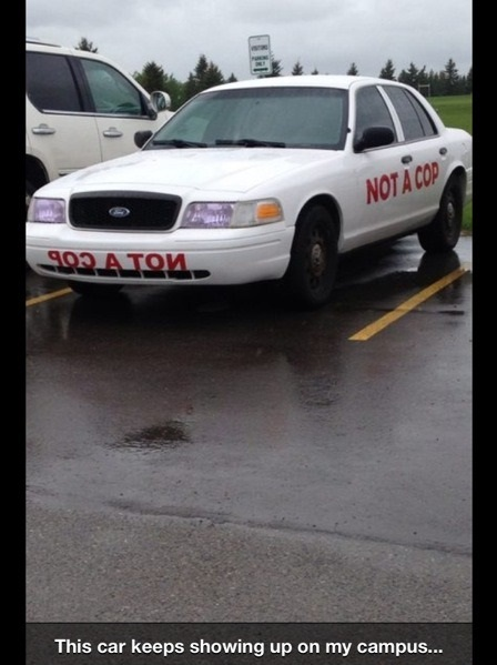 funny-picture-not-a-cop-car