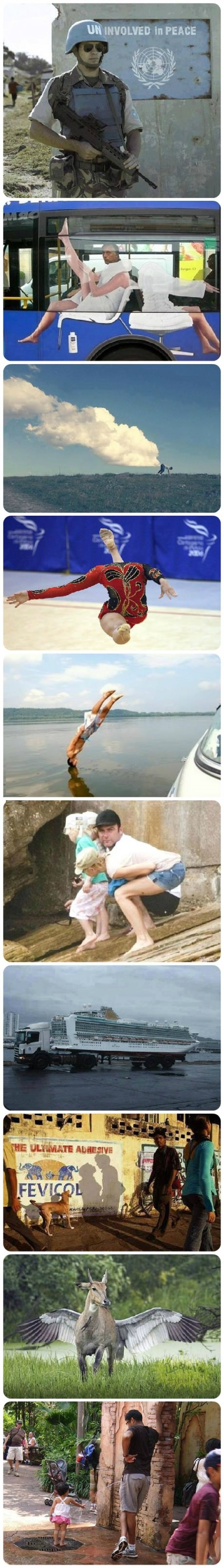 funny-picture-perfectly-timed-pictures