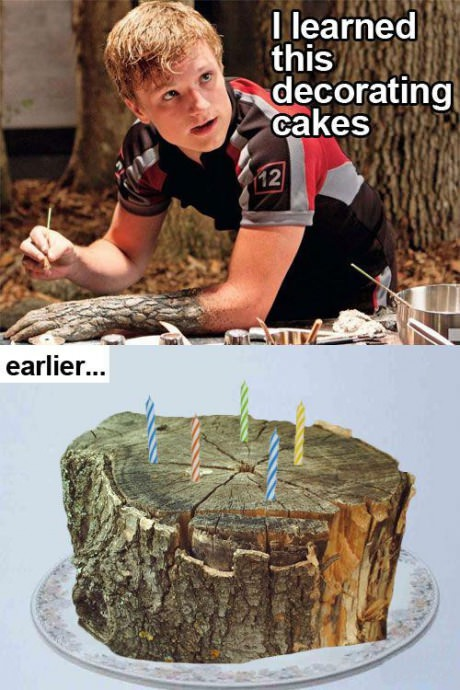 funny-picture-peta-hunger-games-cake