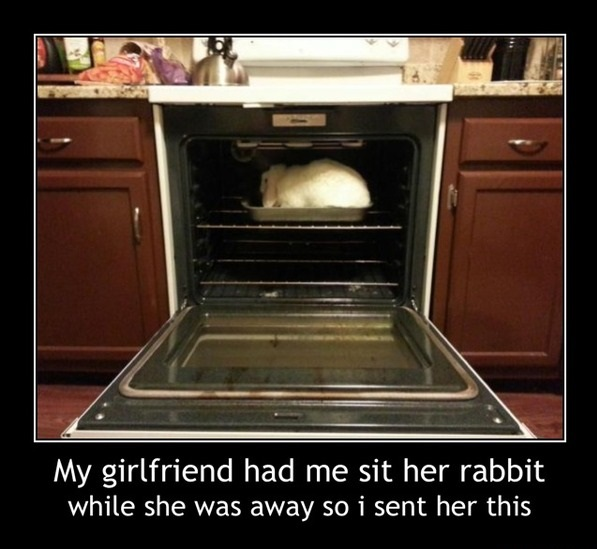 funny-picture-rabbit-oven-girlfriend
