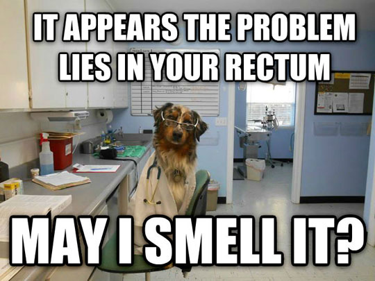 funny-picture-scientist-dog-smell-lab