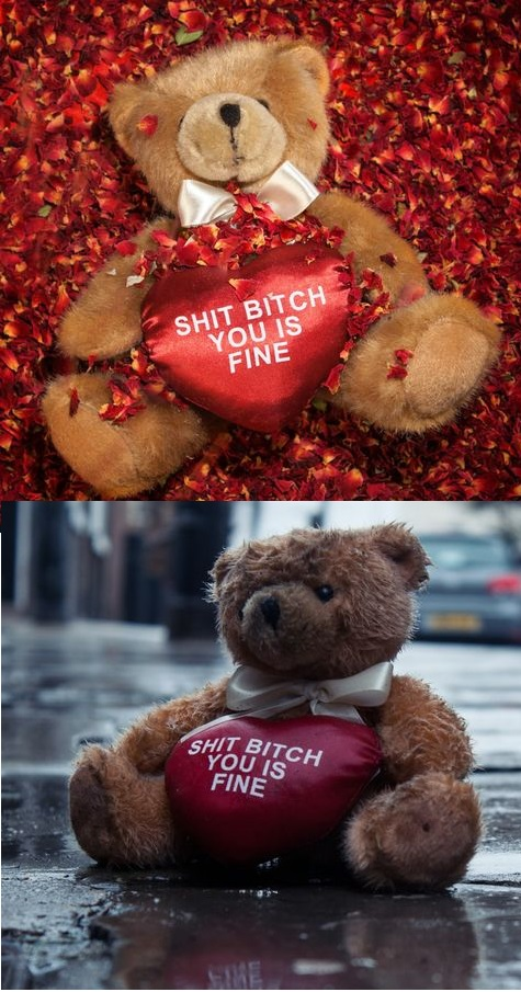 funny-picture-shit-bitch-bear