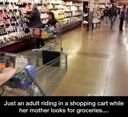 funny-picture-shopping-cart-adult-woman