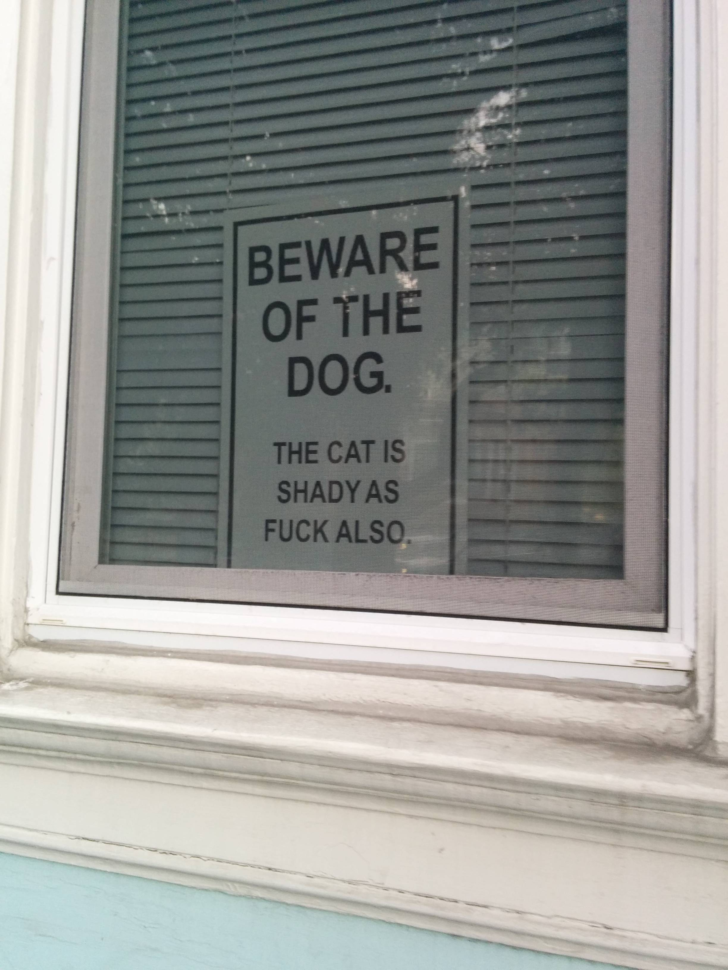 funny-picture-sign-cat-dog