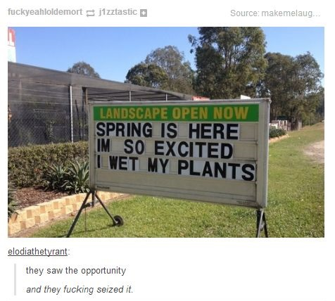 funny-picture-sign-spring