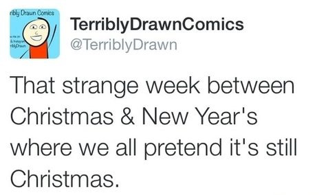 funny-picture-strange-week-christmas