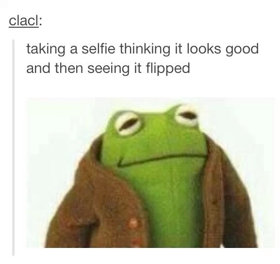 funny-picture-taking-selfies