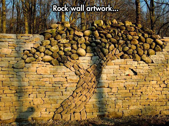 funny-picture-tree-rock-art-stone-wall-forest