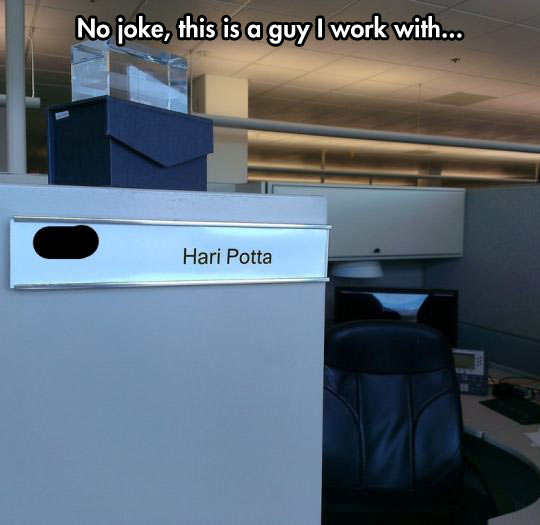funny-picture-Harry-Potter-office-partner