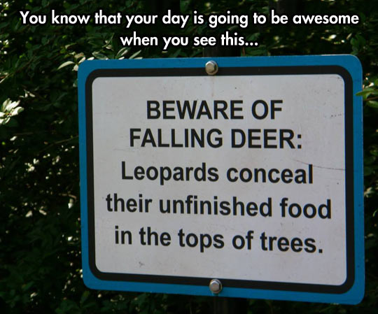 funny-picture-Leopards-sign-beware-deer
