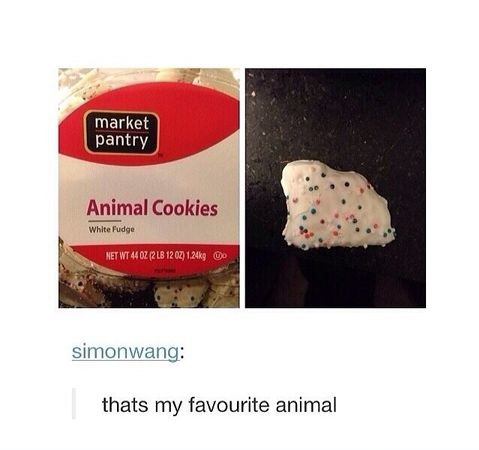 funny-picture-animals-cookies