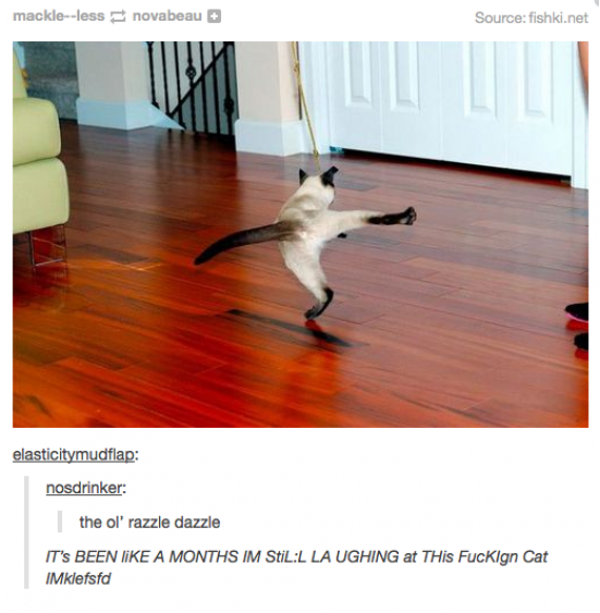 funny-picture-cat-comments-razzle-dazzle