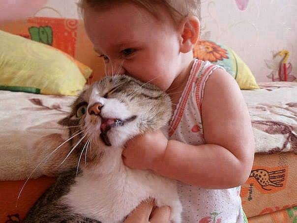 funny-picture-cat-hug-child