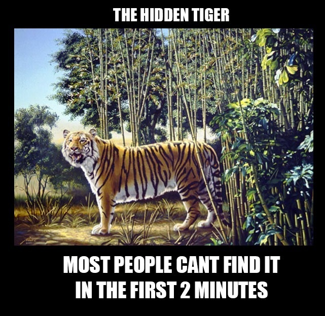funny-picture-find-the-hidden-tiger