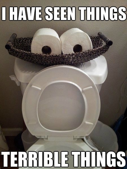 funny-picture-toilet-seen-some-shit