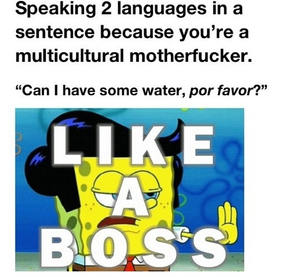 funny-picture-two-languages-like-a-boss