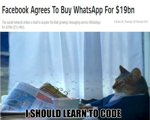 funny-picture-whatsapp-facebook-cat