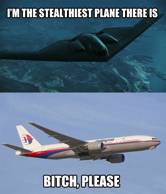 funny-picture-Malaysia-Airlines-stealth-airplane-tough