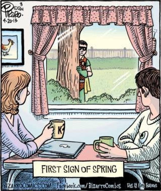 funny-picture-comic-spring-Robin-laptop-Spring