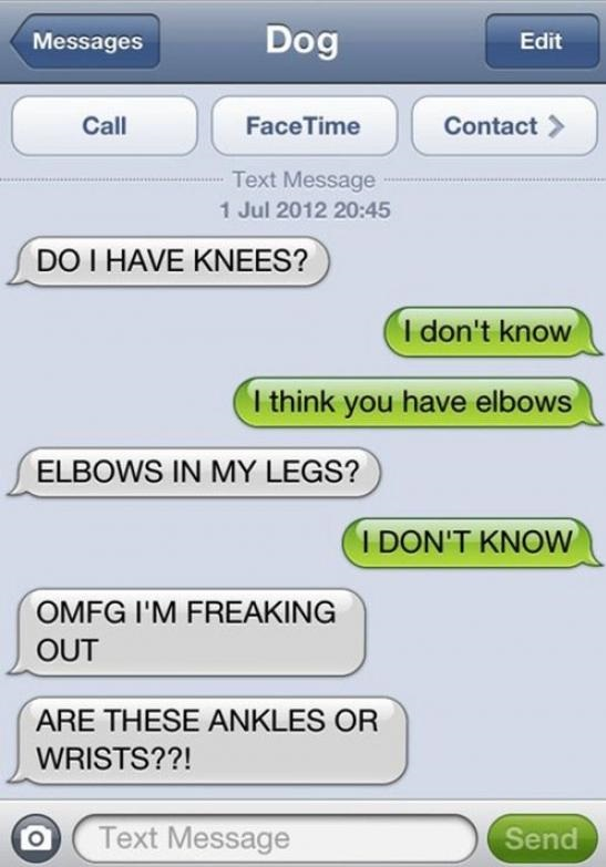 funny-picture-dog-text-ankles-wrists