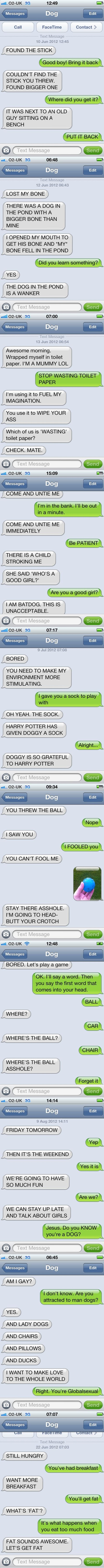 funny-picture-dog-texts-compilation