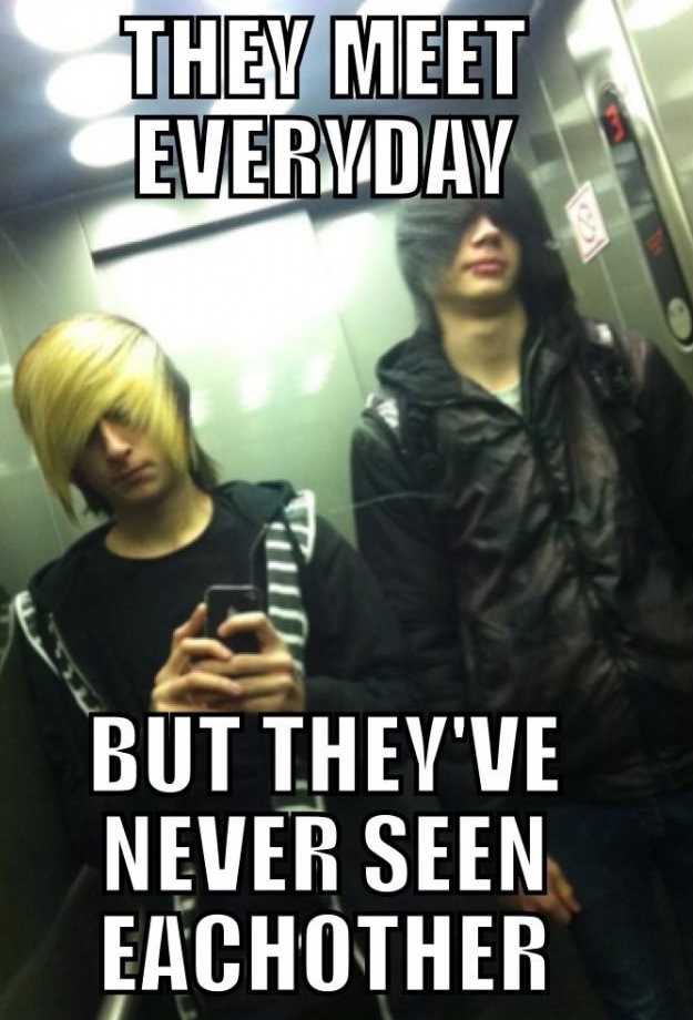 funny-picture-emo-elevator-hair