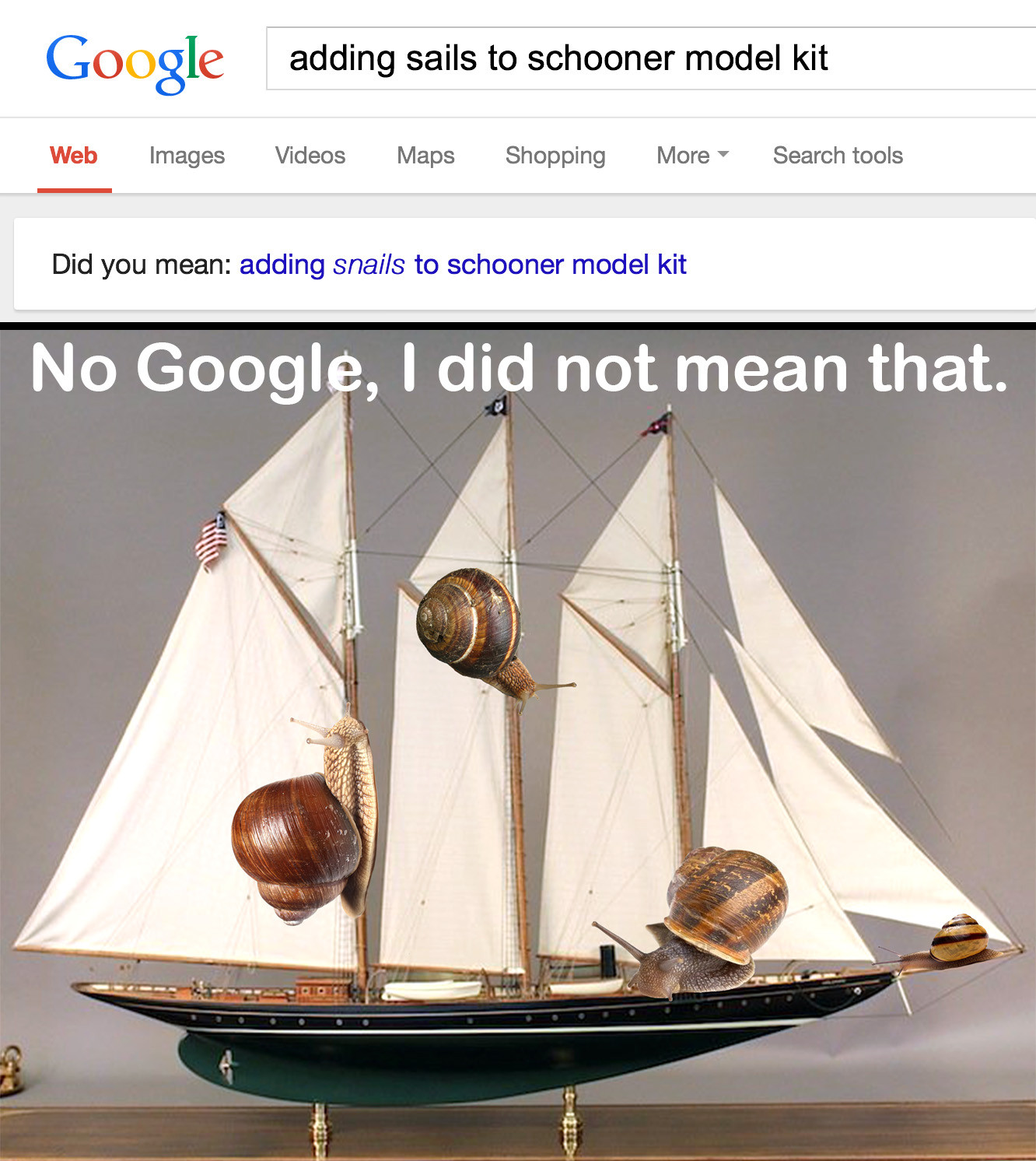 funny-picture-googlee-search-sails