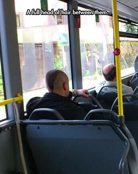 funny-picture-haircut-balding-head-bus