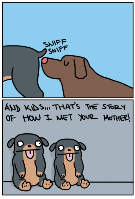 funny-picture-himym-comics-dogs