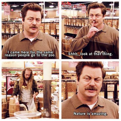 funny-picture-ron-swanson-nature