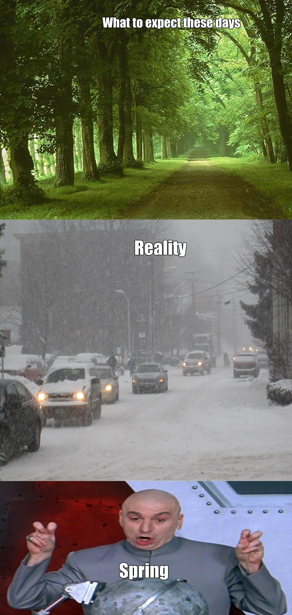funny-picture-spring-expectations-reality