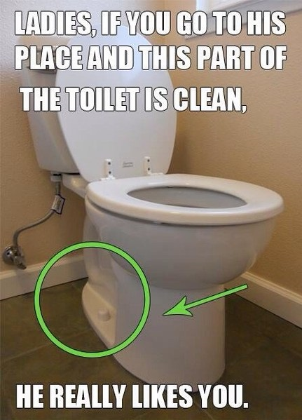 funny-picture-toilet-clean