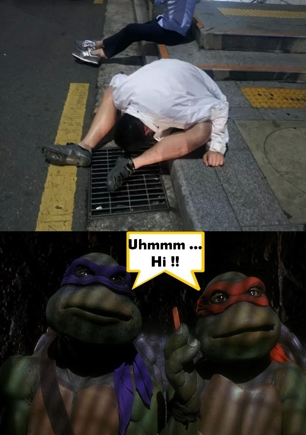 funny-picture-turtles-penny
