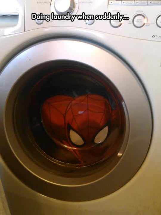funny-picture-washer-laundry-spiderman-inside