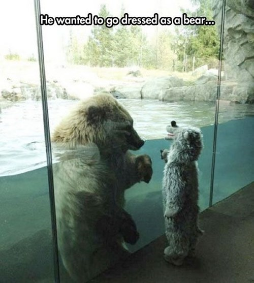 funny-pciture-kid-bear