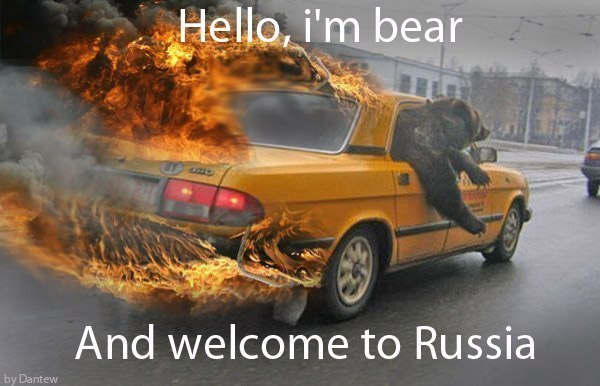 funny-picture-bear-russia