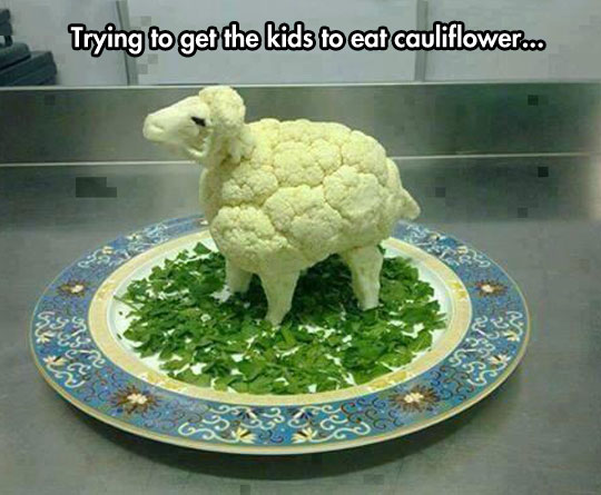 funny-picture-cauliflower-sheep-food-kids