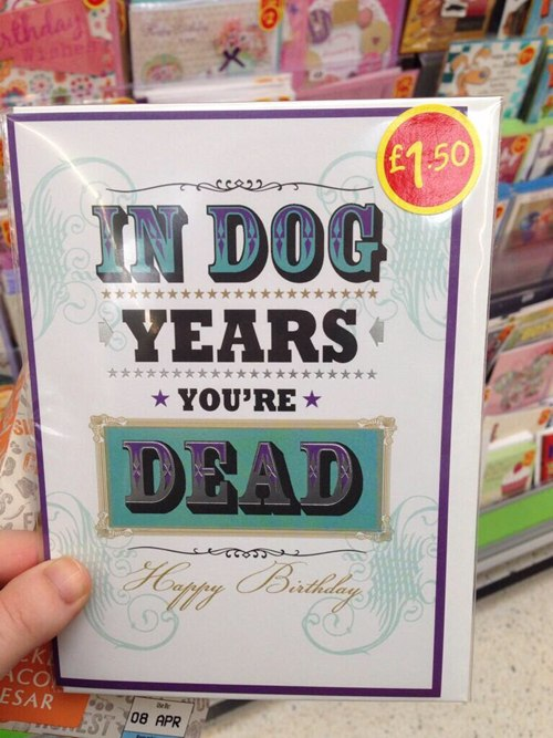 funny-picture-dog-years-card
