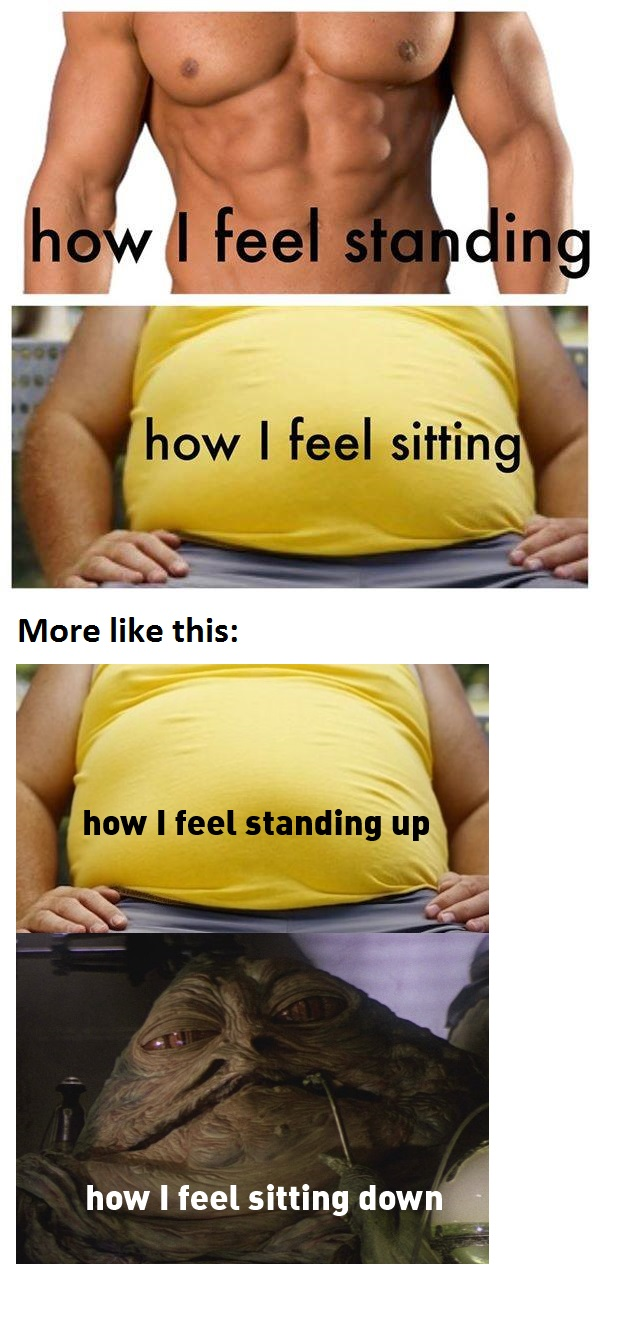 funny-picture-fat-sit-stand