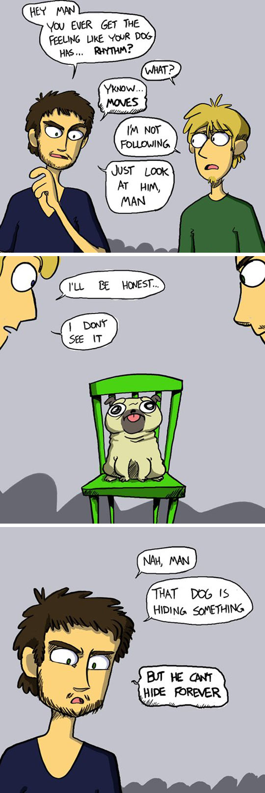 funny-picture-friends-talking-pug-chair