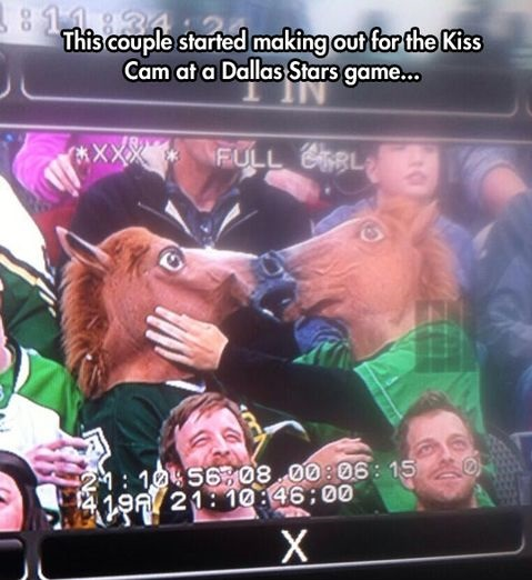 funny-picture-horse-mask-kiss
