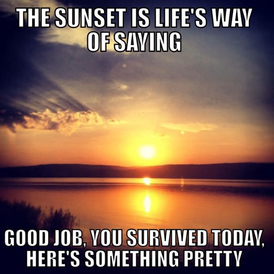funny-picture-life-gift-sunset-pretty