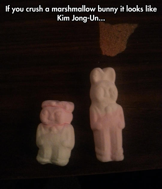 funny-picture-marshmallow-bunnies-crush-Kim-Jong-Un