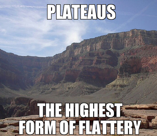 funny-picture-mountains-flattery-form
