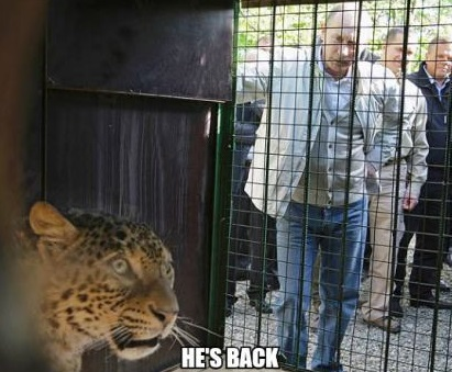 funny-picture-putin-back