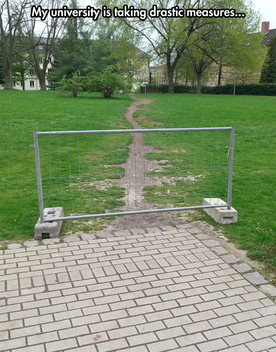 funny-picture-university-campus-barrier-road