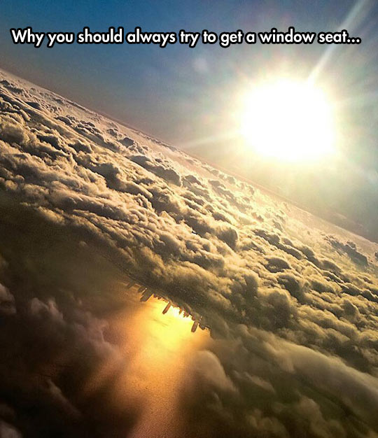 funny-picture-window-plane-photo-sun-reflex