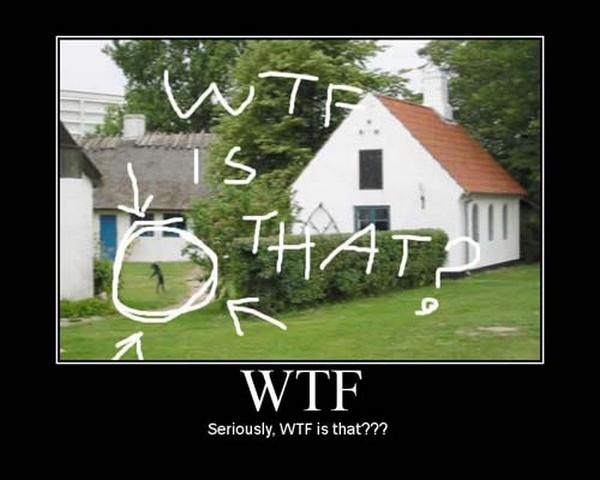 funny-picture-wtf-weird