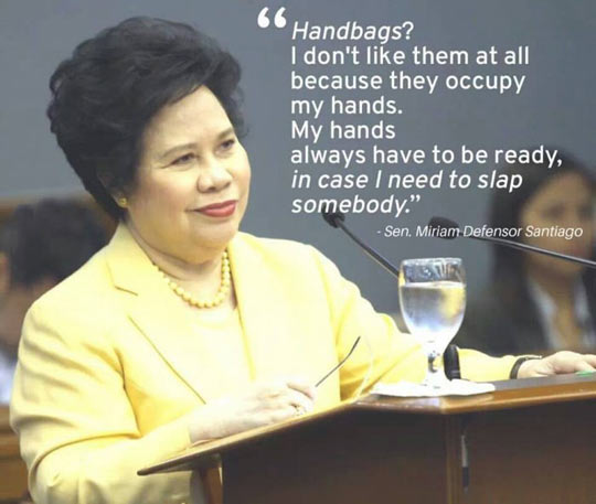wanna-joke-quote-handbags-Senator-speech