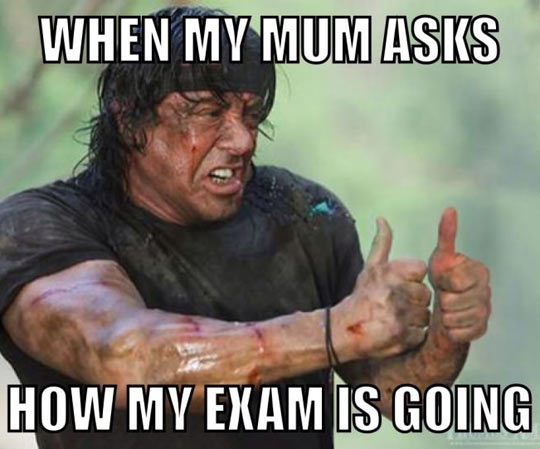 funny-picture-Rambo-OK-mother-asking